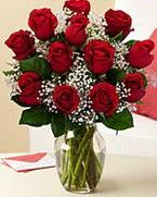 Sevgilime hediye 9 adet 1.ci kalite gül  Kahramanmaraş çiçek gönderme