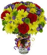 En güzel hediye karışık mevsim çiçeği  Kahramanmaraş hediye sevgilime hediye çiçek