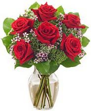Kız arkadaşıma hediye 6 kırmızı gül  Kahramanmaraş güvenli kaliteli hızlı çiçek