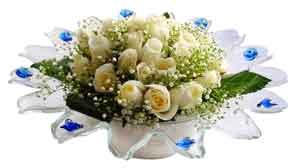 Kahramanmaraş çiçek satışı  11 adet Beyaz güller özel cam tanzim