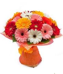 Renkli gerbera buketi  Kahramanmaraş çiçek gönderme