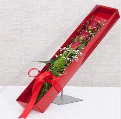 Kutu içerisinde 3 adet kırmızı gül  Kahramanmaraş online çiçekçi , çiçek siparişi
