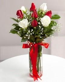 5 kırmızı 4 beyaz gül vazoda  Kahramanmaraş İnternetten çiçek siparişi