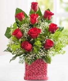 Cam içerisinde 9 adet kırmızı gül  Kahramanmaraş çiçek mağazası , çiçekçi adresleri