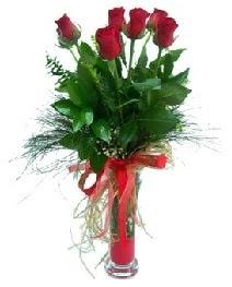 vazo içerisinde 5 kırmızı gül  Kahramanmaraş çiçekçi mağazası