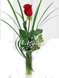 Cam içerisinde 1 kırmızı gül  Kahramanmaraş çiçek siparişi vermek