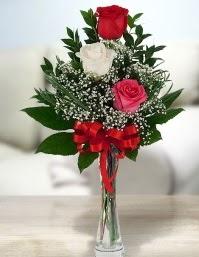 Camda 2 kırmızı 1 beyaz gül  Kahramanmaraş anneler günü çiçek yolla