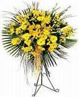 Kahramanmaraş çiçek siparişi sitesi  Sari kazablanka Ferforje