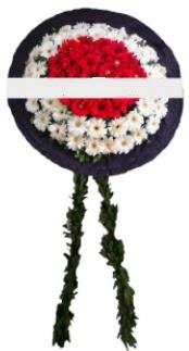 mozele çiçeği  Kahramanmaraş çiçekçi telefonları