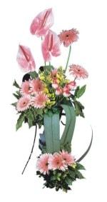 Kahramanmaraş çiçekçi mağazası  Pembe Antoryum Harikalar Rüyasi