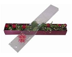 Kahramanmaraş çiçek gönderme   6 adet kirmizi gül kutu içinde