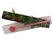 Kahramanmaraş hediye sevgilime hediye çiçek  3 adet gül.kutu yaldizlidir.