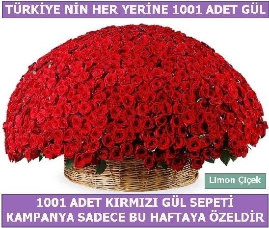 1001 Adet kırmızı gül Bu haftaya özel  Kahramanmaraş internetten çiçek siparişi