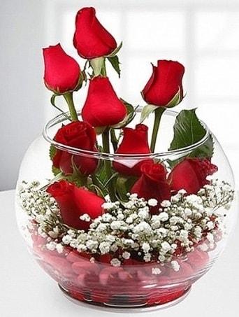 Kırmızı Mutluluk fanusta 9 kırmızı gül  Kahramanmaraş çiçek servisi , çiçekçi adresleri