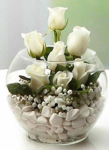 Beyaz Mutluluk 9 beyaz gül fanusta  Kahramanmaraş çiçek servisi , çiçekçi adresleri