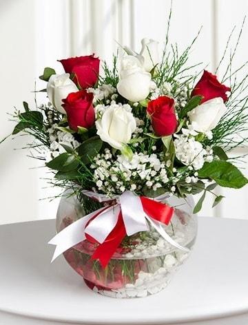 Aşk Küresi  5 beyaz 5 kırmızı gül fanusta  Kahramanmaraş çiçek mağazası , çiçekçi adresleri