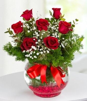 fanus Vazoda 7 Gül  Kahramanmaraş 14 şubat sevgililer günü çiçek