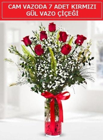Cam vazoda 7 adet kırmızı gül çiçeği  Kahramanmaraş çiçek siparişi vermek