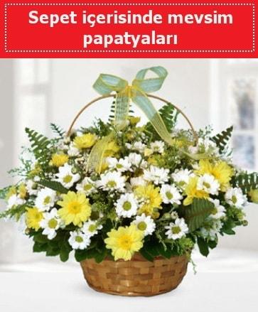 Sepet içerisinde mevsim papatyaları  Kahramanmaraş anneler günü çiçek yolla